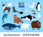 arctic animals. cute animal set ... | Shutterstock .eps vector #1055548586