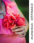 poppies in hands wreath | Shutterstock . vector #1055566613