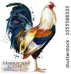 american game rooster. poultry... | Shutterstock . vector #1055588333
