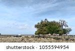 nai yang beach phuket thailand. | Shutterstock . vector #1055594954