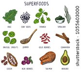 hand drawn superfoods. healthy... | Shutterstock .eps vector #1055603000