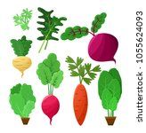 vitaminic vegetable collection... | Shutterstock .eps vector #1055624093