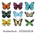butterflies types collection... | Shutterstock .eps vector #1055624318