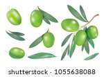 collection with green olive... | Shutterstock .eps vector #1055638088