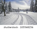 Landscape With Ski Trail In...