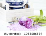 table decoration  purple tulips ... | Shutterstock . vector #1055686589