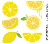 lemon fruit set | Shutterstock .eps vector #1055718428