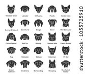 dogs breeds glyph icons set.... | Shutterstock .eps vector #1055725910