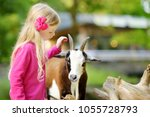 cute little girl petting and... | Shutterstock . vector #1055728793