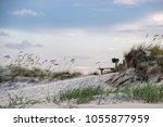 kindred spirit mailbox in... | Shutterstock . vector #1055877959