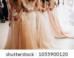girls in wedding dresses are... | Shutterstock . vector #1055900120