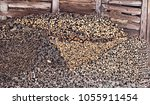 pile of various firewood... | Shutterstock . vector #1055911454