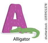 alphabet with letter a. english ... | Shutterstock .eps vector #1055921378