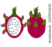 fruit for diabetic  low sugar   ... | Shutterstock .eps vector #1055925656