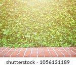 green leaves bush wall fence...   Shutterstock . vector #1056131189