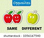 opposite words for same and... | Shutterstock .eps vector #1056167540