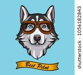 siberian husky dog pilot.... | Shutterstock .eps vector #1056182843