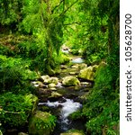 stream in the tropical forest. | Shutterstock . vector #105628700