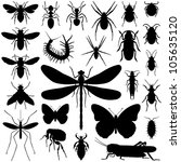 insect collection   vector... | Shutterstock .eps vector #105635120