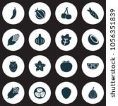 vegetable icons set with palm...   Shutterstock .eps vector #1056351839