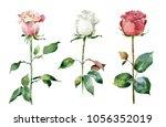 set of roses on white... | Shutterstock . vector #1056352019