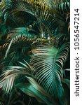 Deep Dark Green Palm Leaves...