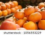 Decorative Orange Pumpkins On...