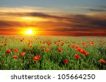 field with green grass and red... | Shutterstock . vector #105664250