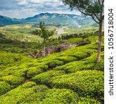 tea plantations in kerala | Shutterstock . vector #1056718004