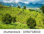 tea plantations in kerala | Shutterstock . vector #1056718010