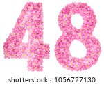 arabic numeral 48  forty eight  ... | Shutterstock . vector #1056727130