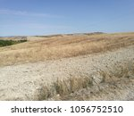 field cultivated with wheat and ... | Shutterstock . vector #1056752510