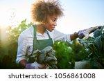 african american woman tending... | Shutterstock . vector #1056861008