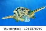 plastic underwater pollution... | Shutterstock . vector #1056878060