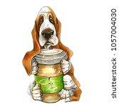 A Dog Of Basset Hound Breed. O...