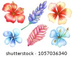 watercolor and gold. tropical... | Shutterstock . vector #1057036340