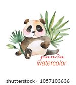Watercolor Painted Images Of...