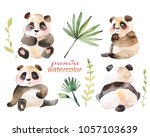 watercolor painted images of... | Shutterstock . vector #1057103639
