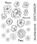 graphic illustration of flowers ... | Shutterstock . vector #1057140029