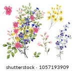 watercolor drawing of twig with ... | Shutterstock . vector #1057193909