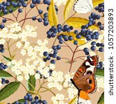 elderberry vector seamless... | Shutterstock .eps vector #1057203893