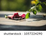 wedding rings and calla on... | Shutterstock . vector #1057224290