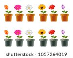 vector illustration of... | Shutterstock .eps vector #1057264019