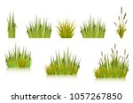 color vector image of a green... | Shutterstock .eps vector #1057267850