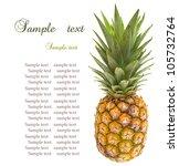mini pineapples on the white... | Shutterstock . vector #105732764