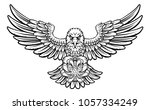 an eagle angry animal sports...   Shutterstock .eps vector #1057334249