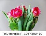 flower arrangement with red... | Shutterstock . vector #1057350410
