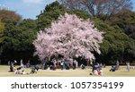 tokyo  japan   march 24th  2018 ... | Shutterstock . vector #1057354199