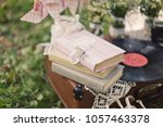 Butterfly On A Vintage Book In...