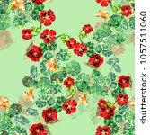 watercolor nasturtium on a... | Shutterstock . vector #1057511060
